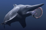 Helicoprion Prehistoric Shark Posters by Christian Darkin
