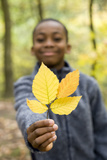 Boy Holding Autumn Leaves Prints by Ian Boddy