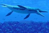 Kronosaurus Marine Reptile Print by Chris Butler