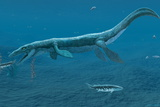 Mosasaurus Marine Reptile Photographic Print by Chris Butler