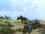 Artwork of Tyrannosaurus & Triceratops Dinosaurs Prints by Chris Butler