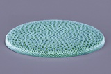 Coscinodiscus Diatom, SEM Photographic Print by Steve Gschmeissner
