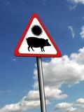 Swine Flu Warning, Conceptual Image Print by Victor Habbick