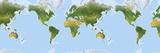 Extended World Map Fotografisk trykk av Gary Hincks