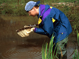 Pond Dipping Photographic Print by Andy Harmer