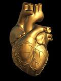 Heart of Gold Photographic Print by Roger Harris