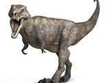 Tyrannosaurus Rex Dinosaur Prints by Roger Harris