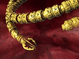 Surgical Snake Robot, Conceptual Artwork Print by Victor Habbick