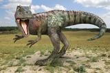 Allosaurus Dinosaur, Artwork Photographic Print by Roger Harris