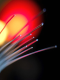 Optical Fibres Photographic Print by Tek Image