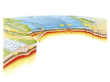 Tectonic Plate Boundaries Print by Gary Hincks