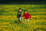 Children In a Meadow Photographic Print by Andy Harmer