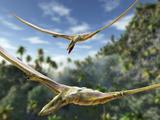 Pterosaurs Flying, Computer Artwork Posters par Roger Harris