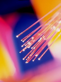 Bundles of Optical Fibres Conducting Light Photographic Print by Steve Horrell