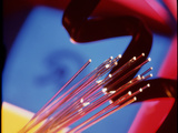 Fibre Optics Conducting Light with Telephone Flex Photographic Print by Steve Horrell