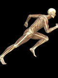 Skeleton Sprinting Photographic Print by Roger Harris
