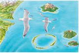 Types of Islands Photographic Print by Gary Hincks
