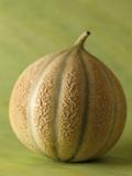 Cantaloupe Melon Photographic Print by Veronique Leplat