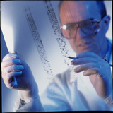 Male Technician Examines DNA Sequences Photographic Print by Tek Image