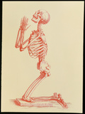 Engraving of Praying Male Skeleton by Cheselden Photographic Print by Mehau Kulyk