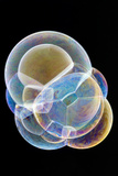 Soap Bubbles Photographic Print by Lawrence Lawry