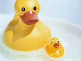 Rubber Ducks Photographic Print by Lawrence Lawry