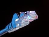 Ethernet Network Connector Fotografisk trykk av Tek Image