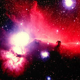 Optical Image of Horsehead Nebula And Sur Photographic Print by Celestial Image