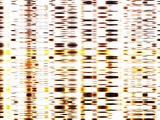 DNA Autoradiogram Photographic Print by Mehau Kulyk