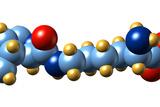 Pyrrolysine, Molecular Model Posters by Dr. Mark J.