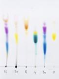 Paper Chromatography Photographie par Andrew Lambert