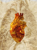 Diseased Heart Posters by Mehau Kulyk
