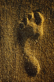 Footprint In Sand Poster by Brad Lewis