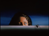 Arachnophobia Photographic Print by David Gifford