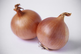 Onions Photographic Print by Veronique Leplat