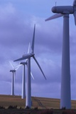 Wind Farm Turbines Prints by Chris Knapton