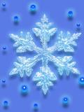 Snowflake Posters by Mehau Kulyk