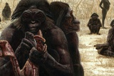 Australopithecus Culture Prints by Kennis and Kennis