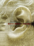 Voice Recognition Prints by Mehau Kulyk