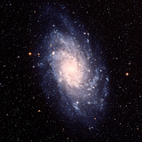 Triangulum Galaxy (M33) Photographic Print by Celestial Image