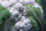 Cauliflower Photo by Veronique Leplat