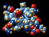 Vitamin B12, Molecular Model Photographic Print by Dr. Mark J.