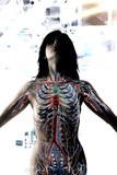 Female Anatomy Photographic Print by Neal Grundy