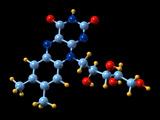 Vitamin B2, Molecular Model Photographic Print by Dr. Mark J.