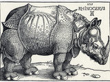 Durer's Rhinoceros, 1515 Premium Photographic Print by Sheila Terry