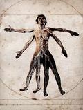 Human Anatomy Photographic Print by Neal Grundy