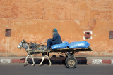Donkey And Cart Transportation Photographic Print by Johnny Greig
