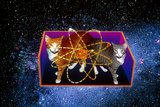 Art of Schrodinger's Cat Experiment Photographic Print by Volker Steger