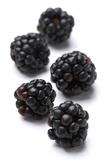 Blackberries Photographic Print by Jon Stokes