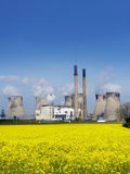 Ferrybridge Power Station And Rape Field Photographic Print by Mark Sykes